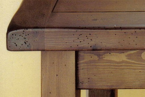 Móvel atacado por insectos